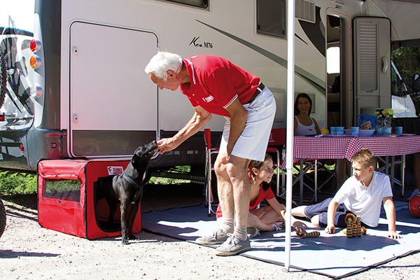cuccia pieghevole per cani
